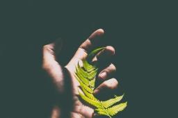O Que Nos Torna Humanos? | #21. As Paixões